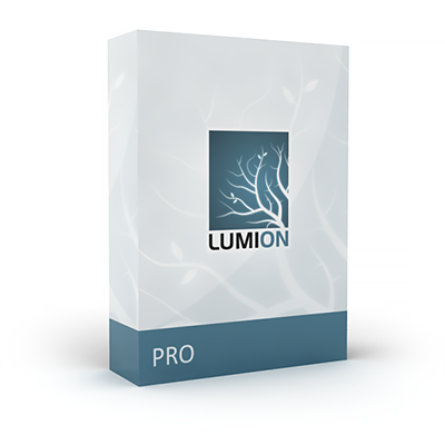 Lumion Professional